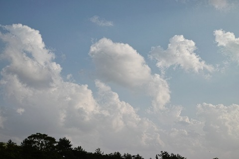 Cloud11072013dp2m02.jpg