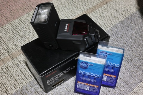 Electric_Flash08212013dp2m02s.jpg
