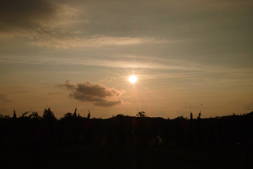 Sunset09012014dp2m01s.jpg