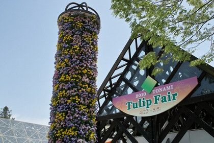 Turip_Fair2010-01dp2.jpg